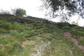 Helvetinkolu / Gorge 3