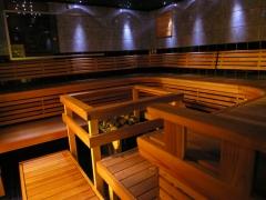 Entertainment sauna