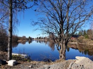 Old the banks of Kyrönjoki river