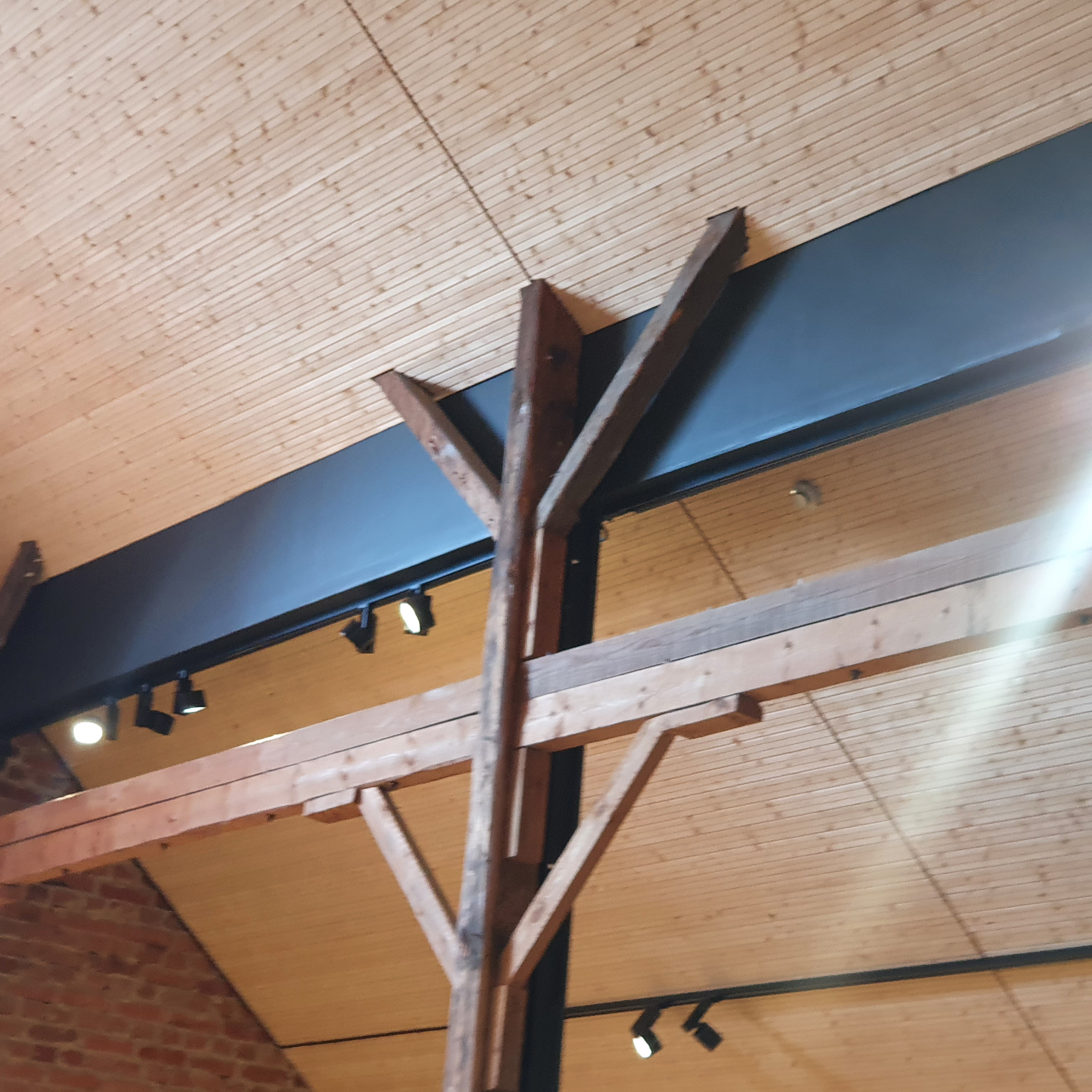 Dark wood pillars and beams against a background of a light wooden ceiling sloping to the centre